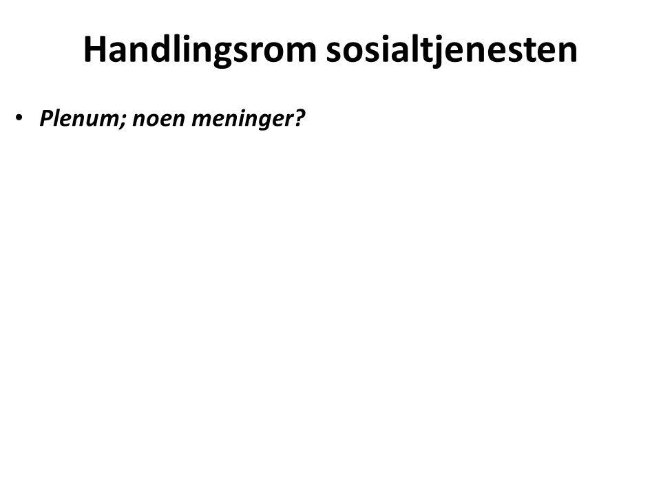 Handlingsrom sosialtjenesten Plenum; noen meninger?