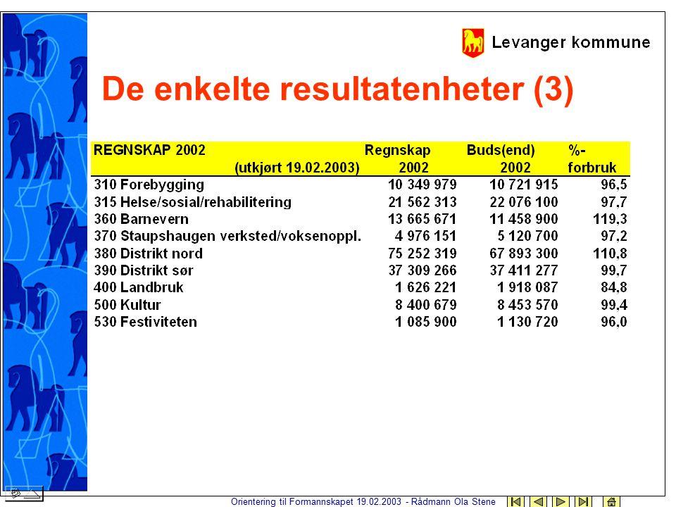Orientering til Formannskapet 19.02.2003 - Rådmann Ola Stene De enkelte resultatenheter (3)