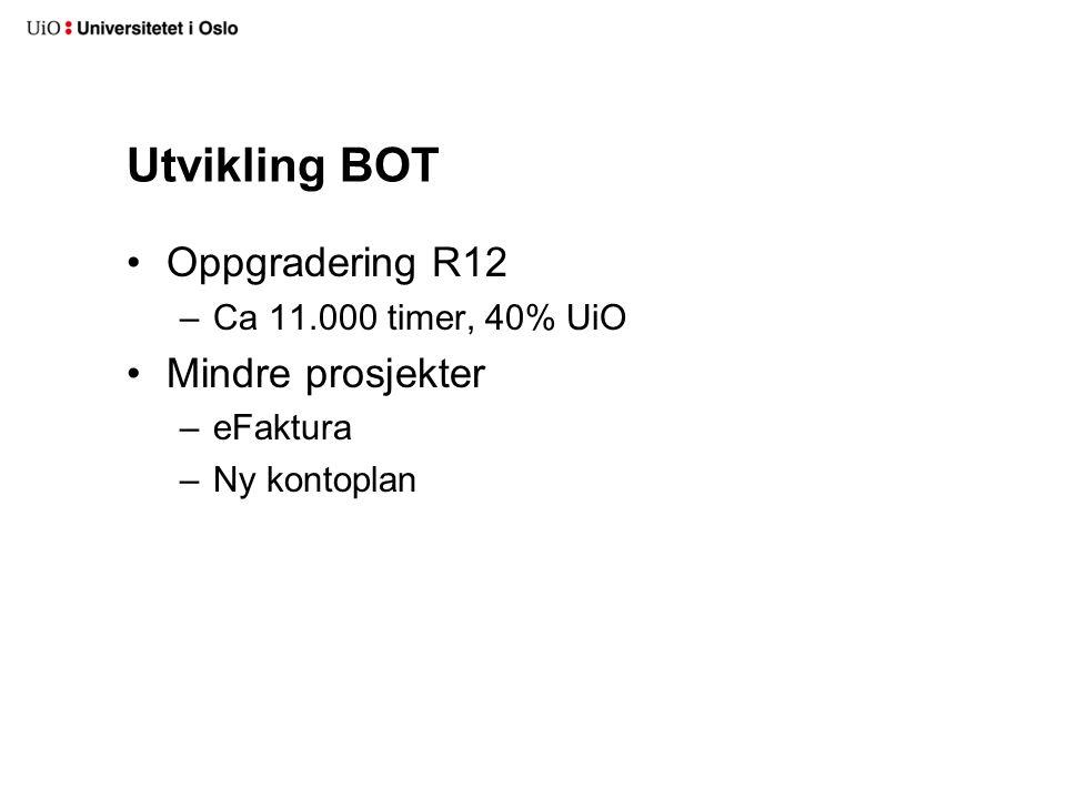 Utvikling BOT Oppgradering R12 –Ca 11.000 timer, 40% UiO Mindre prosjekter –eFaktura –Ny kontoplan