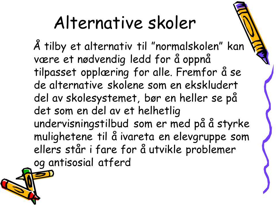 """Alternative skoler Å tilby et alternativ til """"normalskolen"""" kan være et nødvendig ledd for å oppnå tilpasset opplæring for alle. Fremfor å se de alter"""