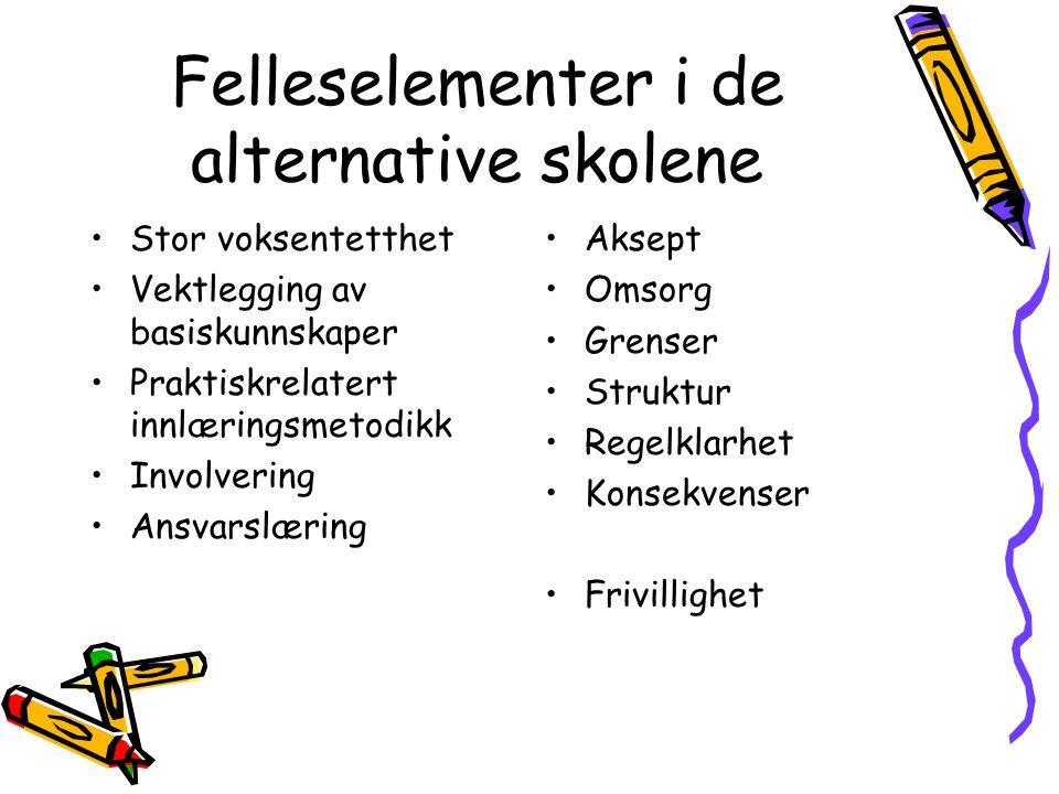 Felleselementer i de alternative skolene Stor voksentetthet Vektlegging av basiskunnskaper Praktiskrelatert innlæringsmetodikk Involvering Ansvarslæri