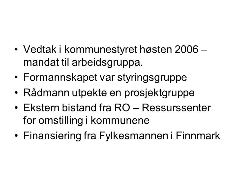 Vedtak i kommunestyret høsten 2006 – mandat til arbeidsgruppa.