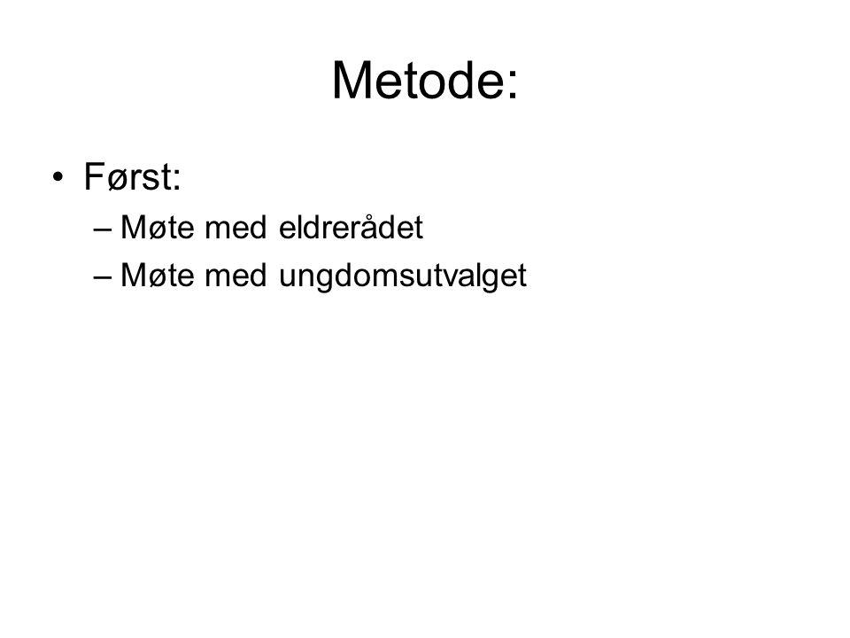Metode: Først: –Møte med eldrerådet –Møte med ungdomsutvalget