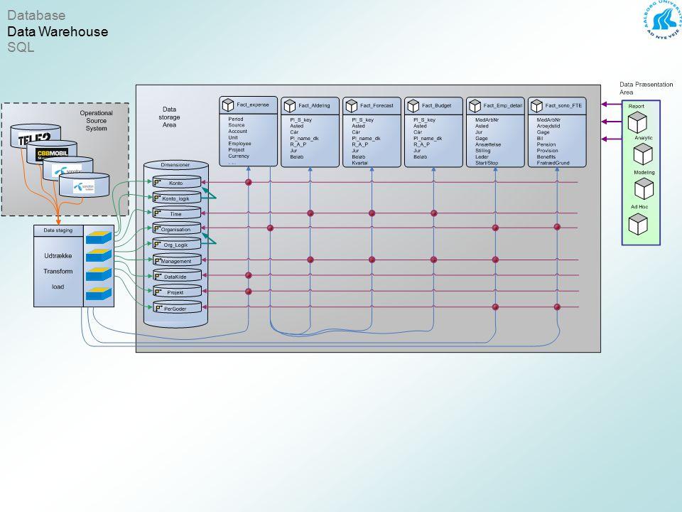 Database Data Warehouse SQL