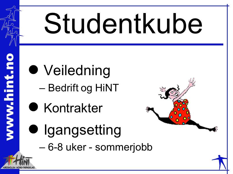 www.hint.no Studentkube l Veiledning – Bedrift og HiNT l Kontrakter l Igangsetting – 6-8 uker - sommerjobb