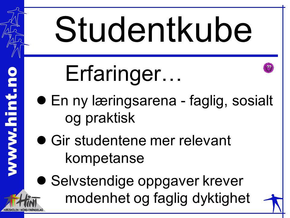 www.hint.no Studentkube Erfaringer… l En ny læringsarena - faglig, sosialt og praktisk l Gir studentene mer relevant kompetanse l Selvstendige oppgave