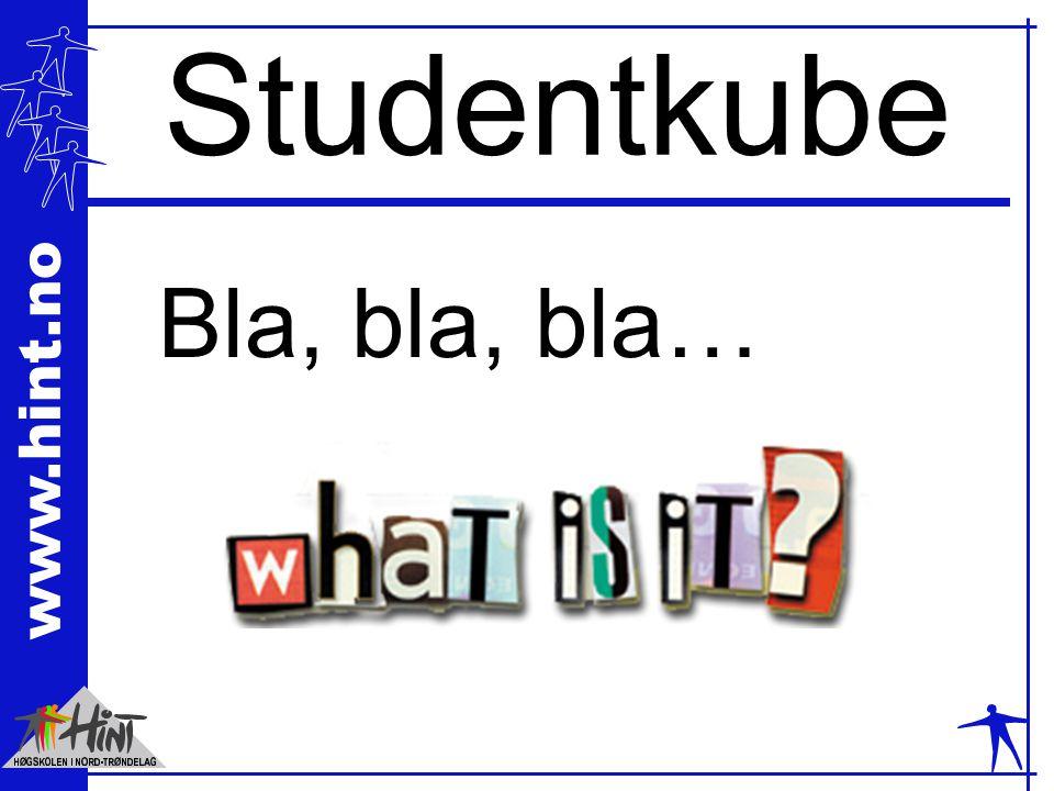 www.hint.no Studentkube Bla, bla, bla…