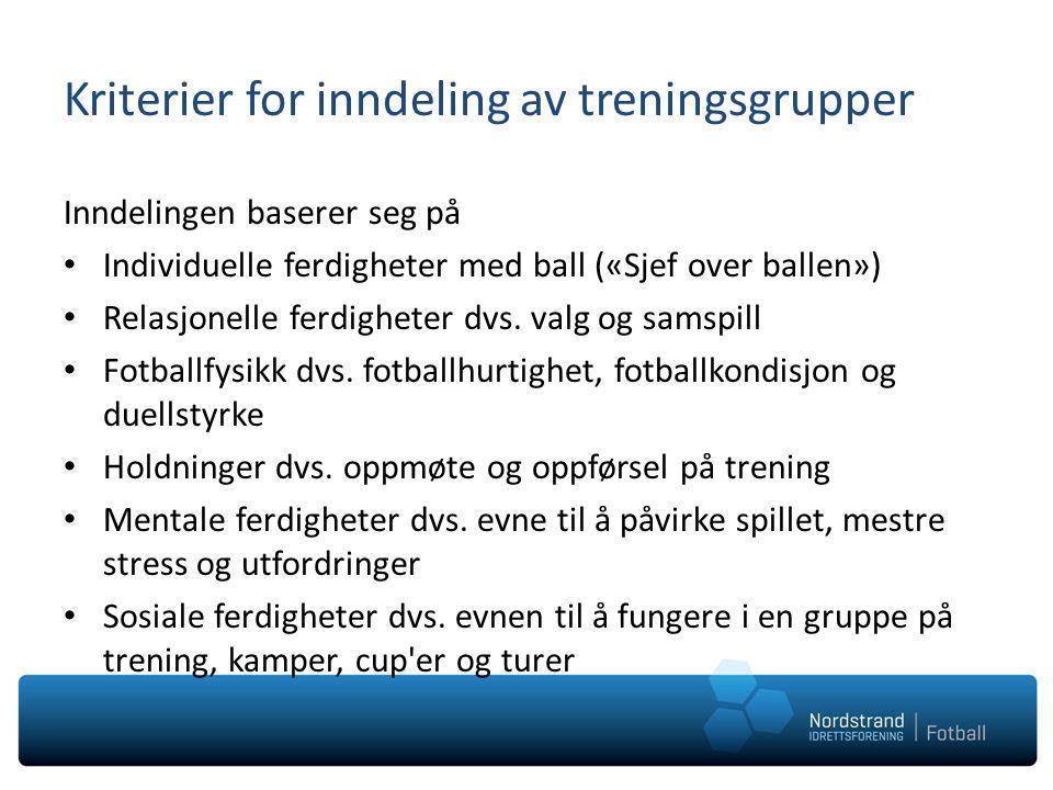 Kriterier for inndeling av treningsgrupper Inndelingen baserer seg på Individuelle ferdigheter med ball («Sjef over ballen») Relasjonelle ferdigheter