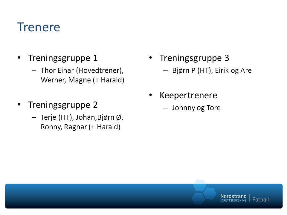 Trenere Treningsgruppe 1 – Thor Einar (Hovedtrener), Werner, Magne (+ Harald) Treningsgruppe 2 – Terje (HT), Johan,Bjørn Ø, Ronny, Ragnar (+ Harald) T
