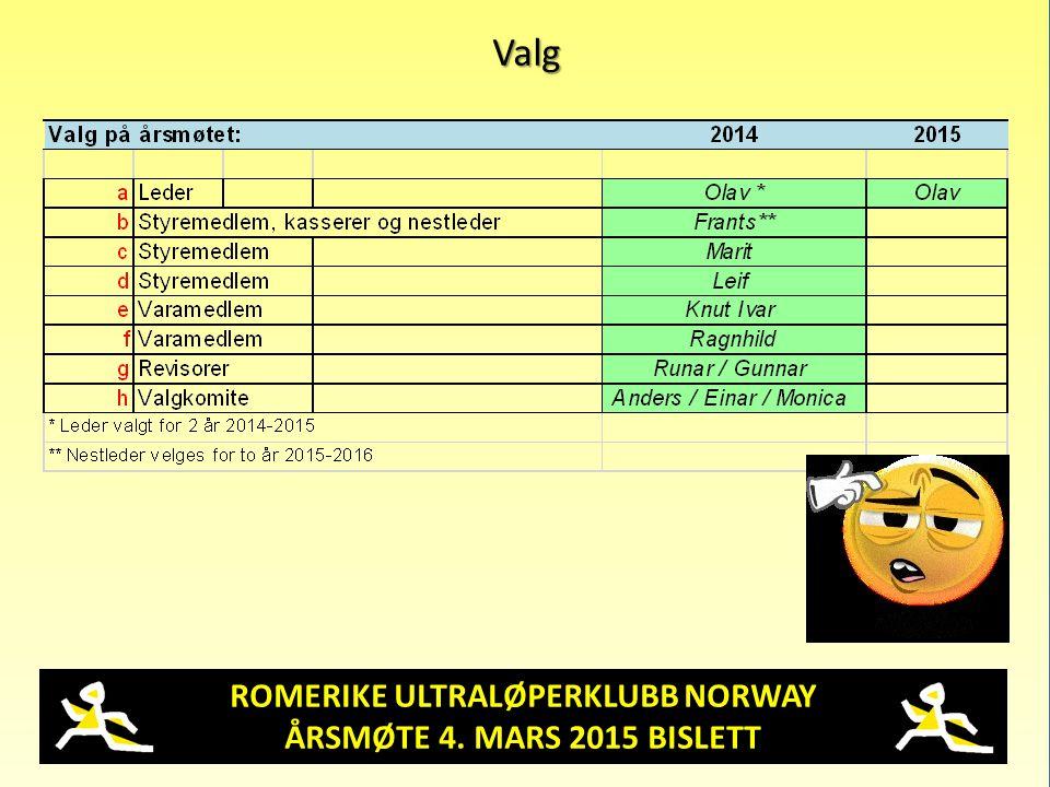 ROMERIKE ULTRALØPERKLUBB NORWAY ÅRSMØTE 4. MARS 2015 BISLETT Valg