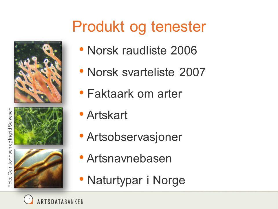 Produkt og tenester Foto: Geir Johnsen og Ingrid Salvesen Norsk raudliste 2006 Norsk svarteliste 2007 Faktaark om arter Artskart Artsobservasjoner Artsnavnebasen Naturtypar i Norge