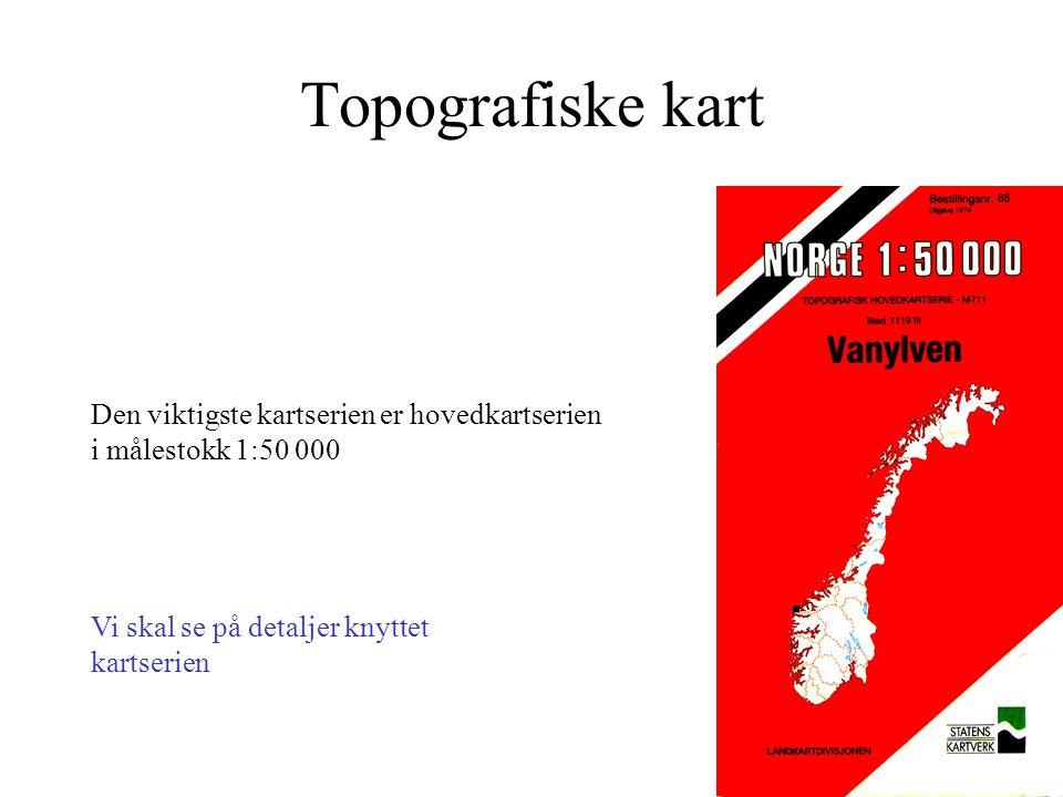 Viktige kartverk i Norge Geografiske kart –1:250 000 - mindre Topografiske kart –1:25 000 - 1:250 000 Økonomiske kart –store - 10 000 Tematiske kart