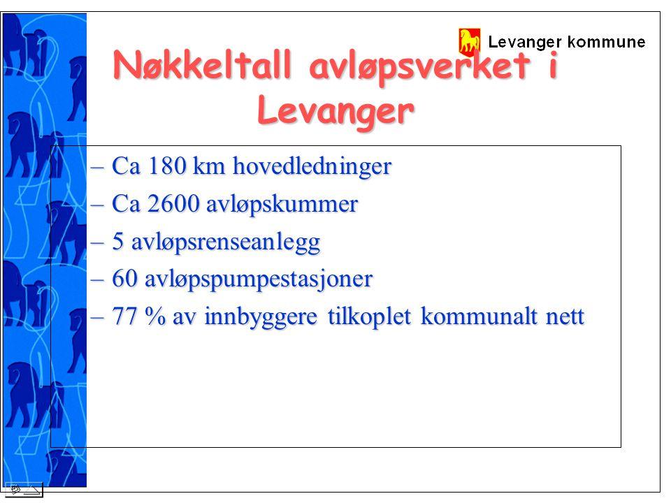 Nøkkeltall kommunale veger i Levanger –217 km kommunal veg 20 km gang / sykkelveg 125 km grusveger 72 km asfaltveger ( eks g/s veger) –23 300 m2 parkeringsplasser –2200 gatelyspunkt –Ca 2000 sluk/kum