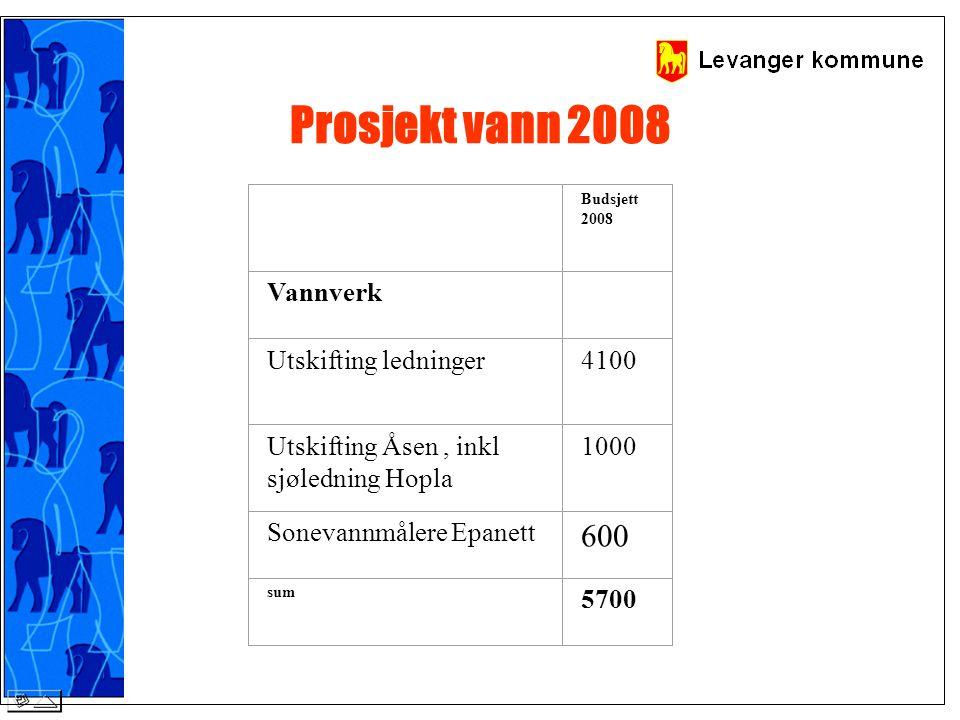 Prosjekt vann 2008 Budsjett 2008 Vannverk Utskifting ledninger 4100 Utskifting Åsen, inkl sjøledning Hopla 1000 Sonevannmålere Epanett 600 sum 5700