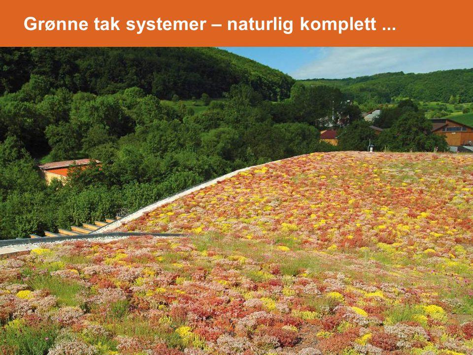 Grønne tak systemer – naturlig komplett...