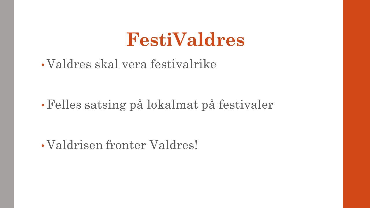 FestiValdres Valdres skal vera festivalrike Felles satsing på lokalmat på festivaler Valdrisen fronter Valdres!