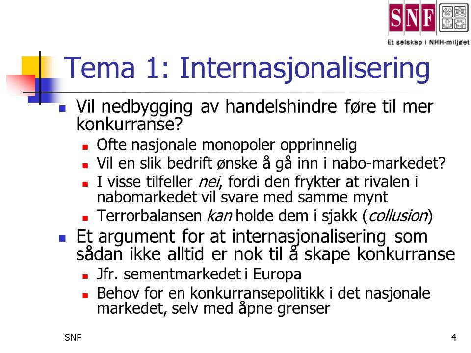 SNF5 Internasjonalisering forts.