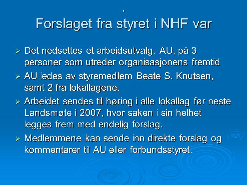 Forslaget fra styret i NHF var  Det nedsettes et arbeidsutvalg.