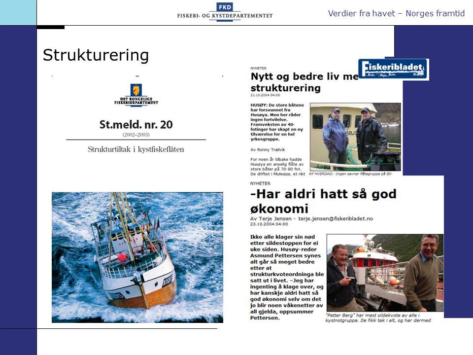 Verdier fra havet – Norges framtid Strukturering