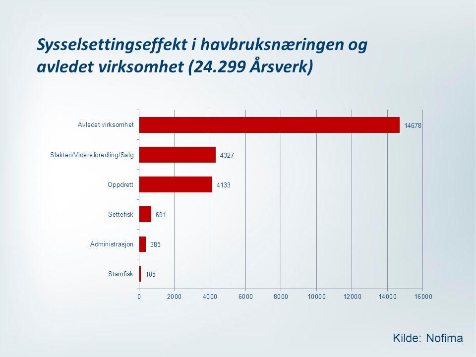 Sysselsettingseffekt i havbruksnæringen og avledet virksomhet (24.299 Årsverk) Kilde: Nofima