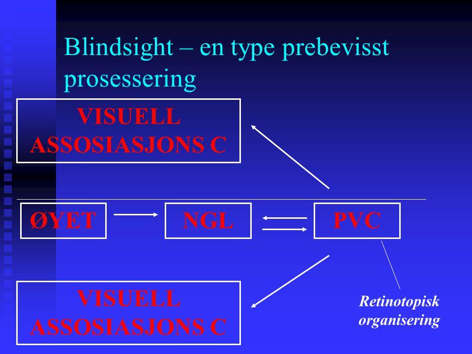 Blindsight – en type prebevisst prosessering