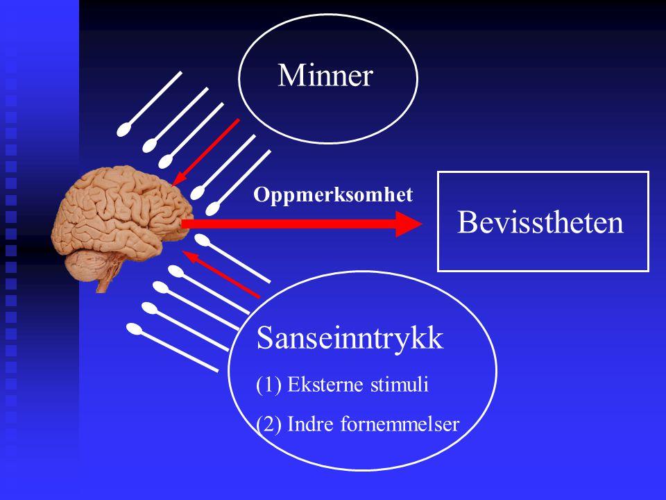 Sanseinntrykk (1) Eksterne stimuli (2) Indre fornemmelser Minner