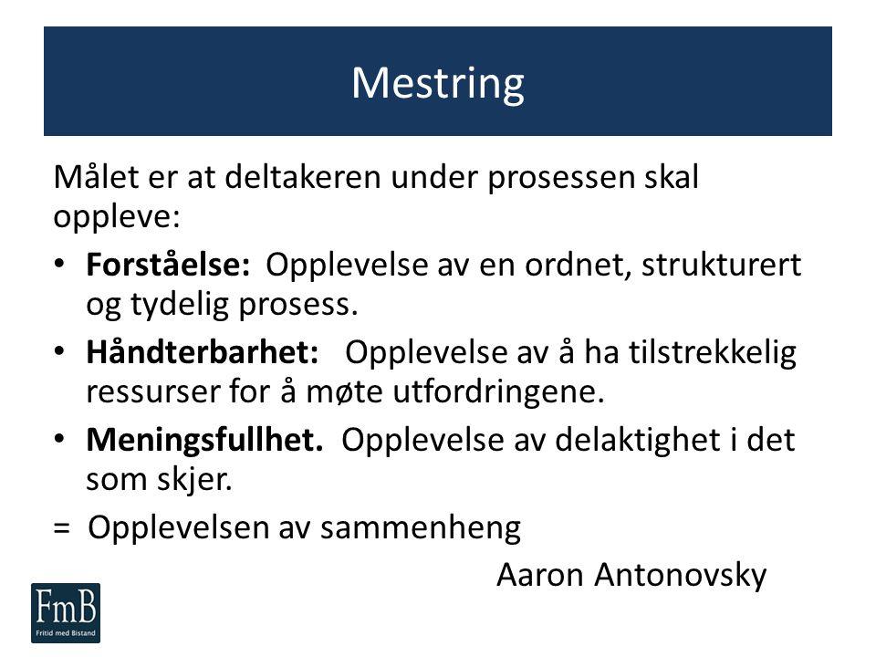 Mestring Målet er at deltakeren under prosessen skal oppleve: Forståelse: Opplevelse av en ordnet, strukturert og tydelig prosess. Håndterbarhet: Oppl