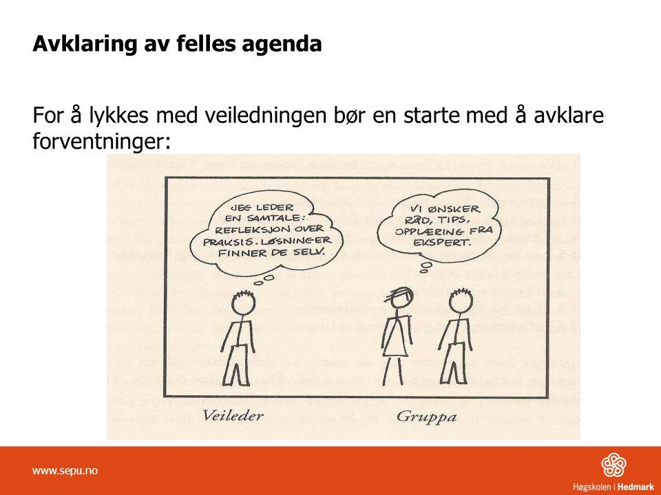 Avklaring av felles agenda For å lykkes med veiledningen bør en starte med å avklare forventninger: www.sepu.no