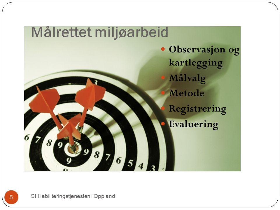 Målrettet miljøarbeid Observasjon og kartlegging Målvalg Metode Registrering Evaluering SI Habiliteringstjenesten i Oppland 5