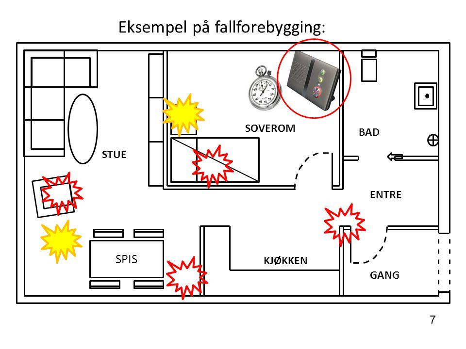 SPIS STUE SOVEROM BAD ENTRE GANG KJØKKEN Eksempel på fallforebygging: 7