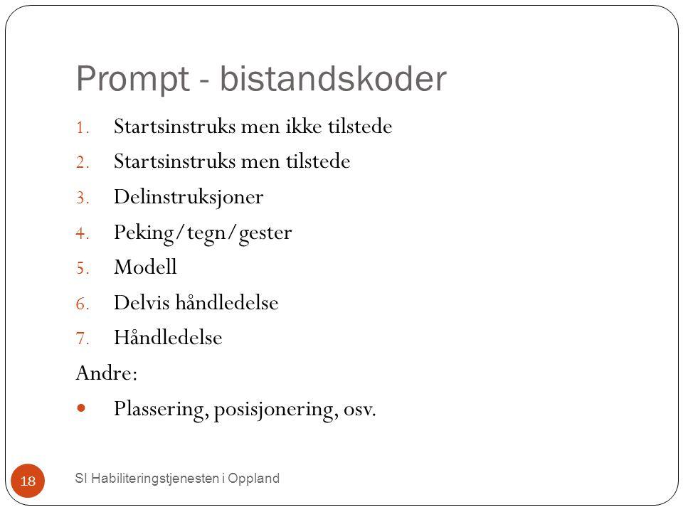 Prompt - bistandskoder 1.Startsinstruks men ikke tilstede 2.