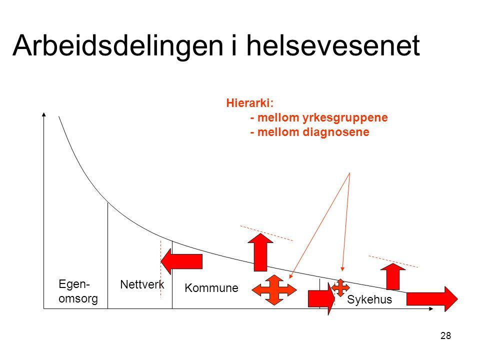 28 Arbeidsdelingen i helsevesenet Egen- omsorg Nettverk Kommune Sykehus Hierarki: - mellom yrkesgruppene - mellom diagnosene