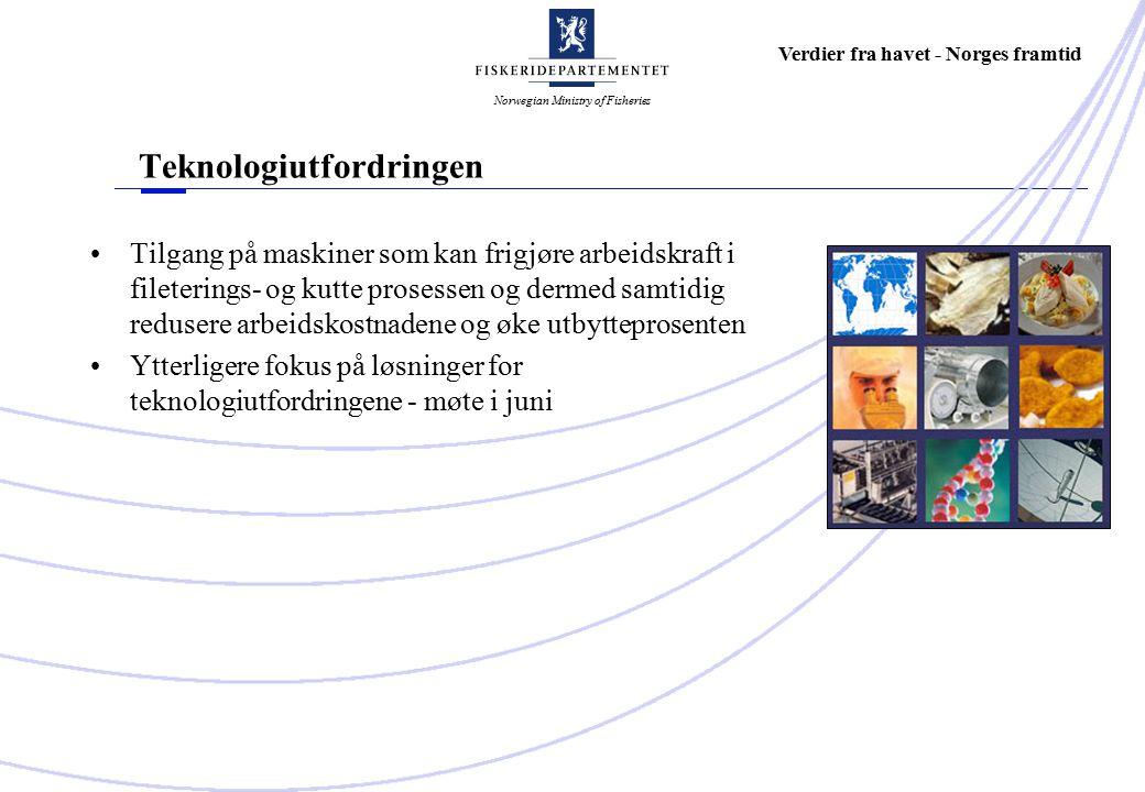 Norwegian Ministry of Fisheries Verdier fra havet - Norges framtid Teknologiutfordringen Tilgang på maskiner som kan frigjøre arbeidskraft i fileterings- og kutte prosessen og dermed samtidig redusere arbeidskostnadene og øke utbytteprosenten Ytterligere fokus på løsninger for teknologiutfordringene - møte i juni