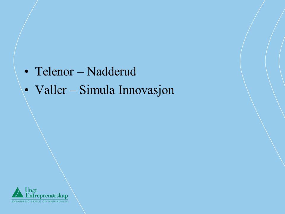 –Samarbeidet konkretiseres gjennom følgende tiltak:.Høland Sparebank (HS) stiller mentorer til rådighet for ungdomsbedriftene ved skolen.