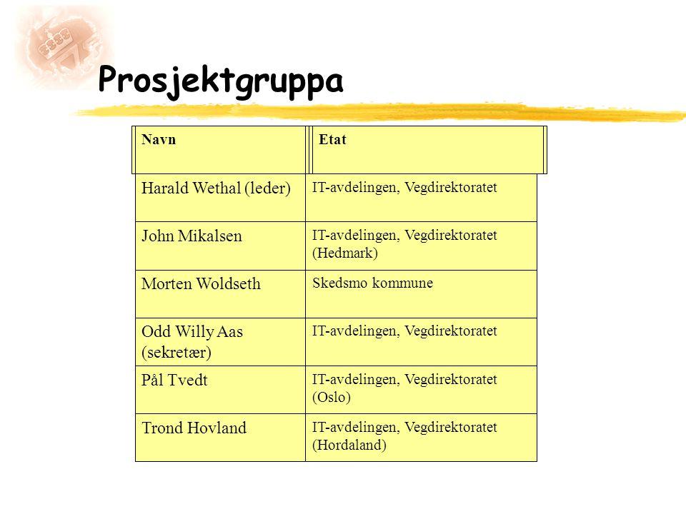 Prosjektgruppa NavnEtat Harald Wethal (leder) IT-avdelingen, Vegdirektoratet John Mikalsen IT-avdelingen, Vegdirektoratet (Hedmark) Morten Woldseth Sk