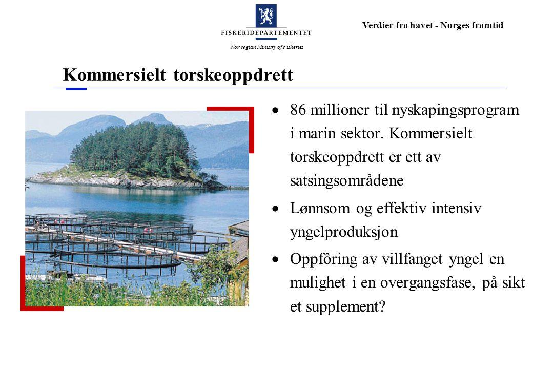 Norwegian Ministry of Fisheries Verdier fra havet - Norges framtid Kommersielt torskeoppdrett  86 millioner til nyskapingsprogram i marin sektor.