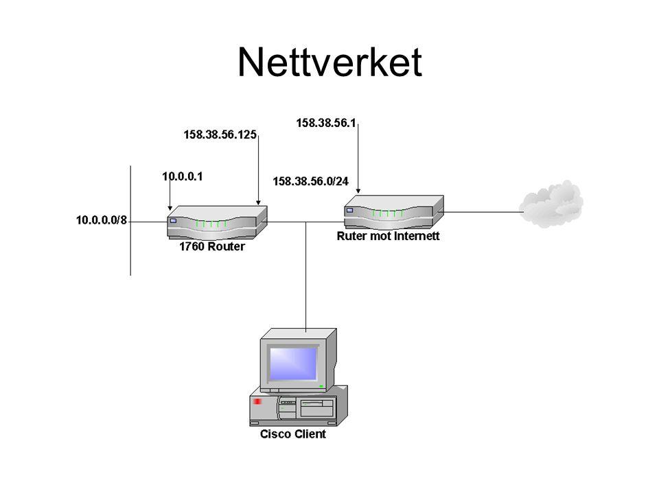 Nettverket