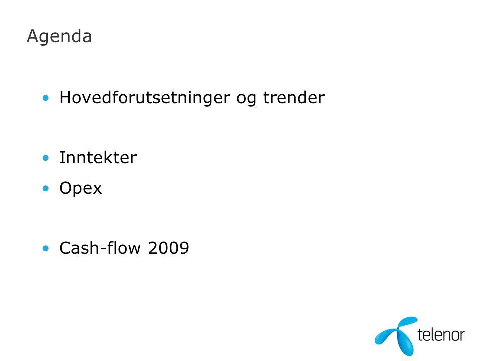 Agenda Hovedforutsetninger og trender Inntekter Opex Cash-flow 2009