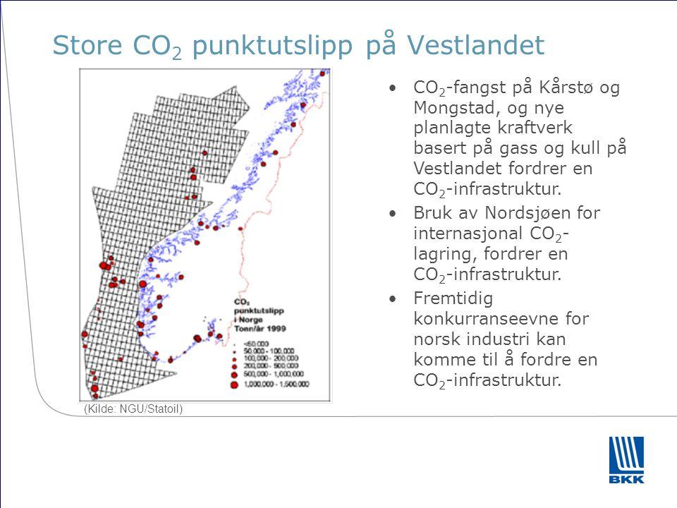 Norges bidrag til globale klimamål Økt produksjon av fornybar energi Energieffektivisering CO 2 -fangst og -lagring Skal nærings- og klimapolitiske mål strande på manglende infrastruktur?