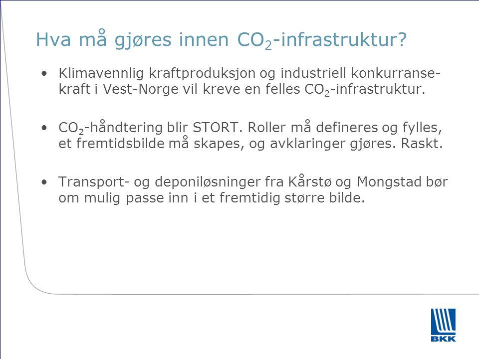 Hovedutfordringer for nettutviklingen Problemet sett fra kraftprodusenter i Vest-Norge er å få produksjonen ut i våtår