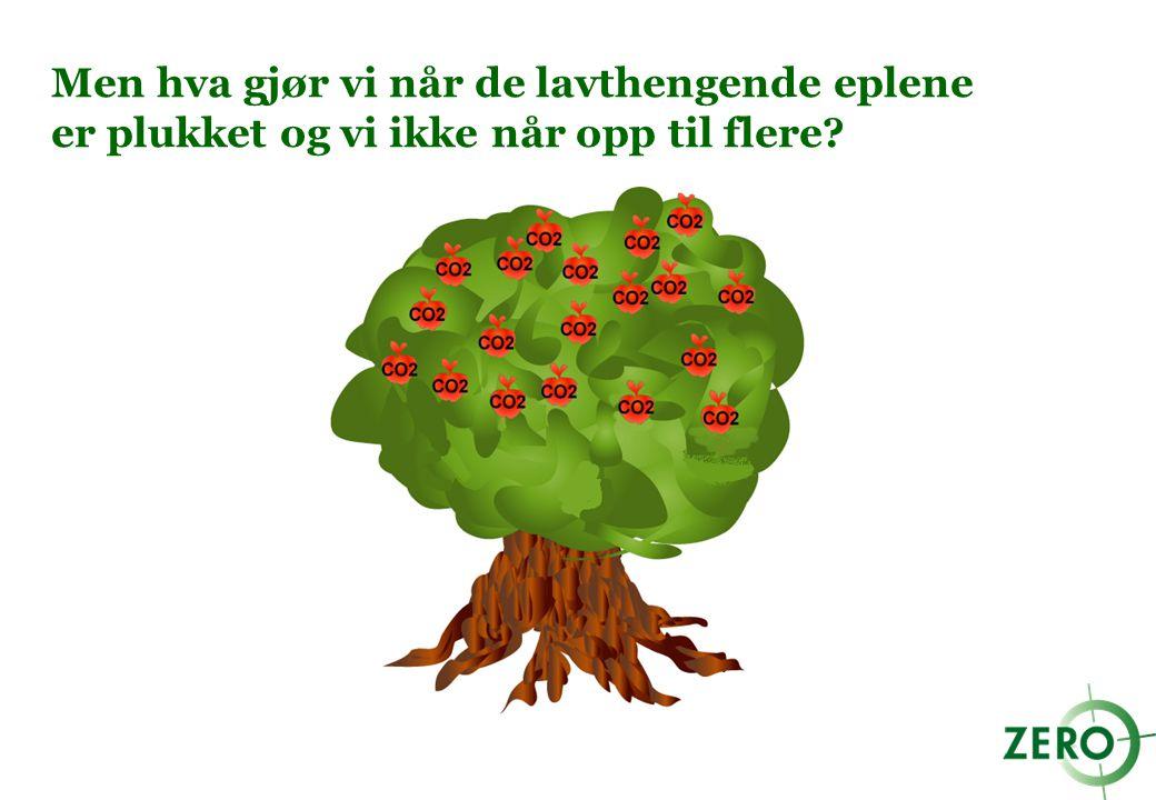 Siden alle eplene må plukkes, må vi investere i en stige med en gang: Vi må allerede nå utvikle og ta i bruk teknologi som kan fjerne de dyre og vanskelige utslippene!