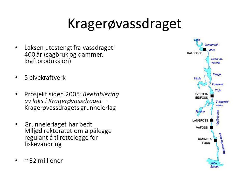Kragerøvassdraget Laksen utestengt fra vassdraget i 400 år (sagbruk og dammer, kraftproduksjon) 5 elvekraftverk Prosjekt siden 2005: Reetablering av l