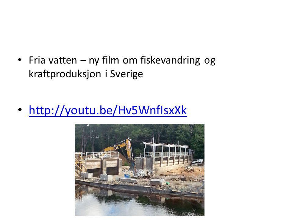 Fria vatten – ny film om fiskevandring og kraftproduksjon i Sverige http://youtu.be/Hv5WnfIsxXk