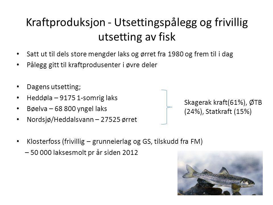 Kraftproduksjon - Utsettingspålegg og frivillig utsetting av fisk Satt ut til dels store mengder laks og ørret fra 1980 og frem til i dag Pålegg gitt