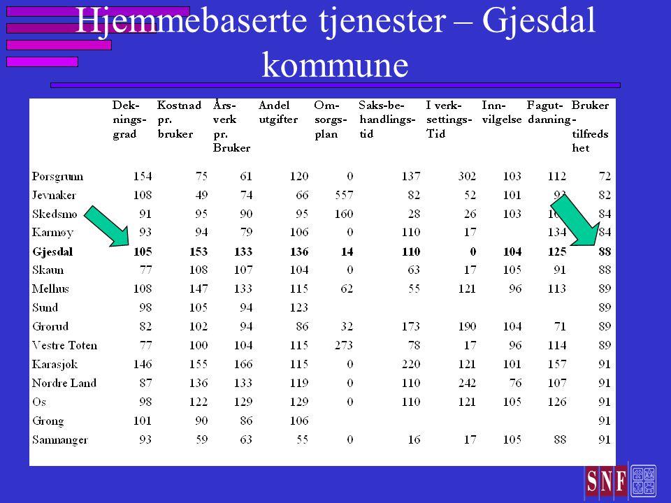 Hjemmebaserte tjenester – Gjesdal kommune