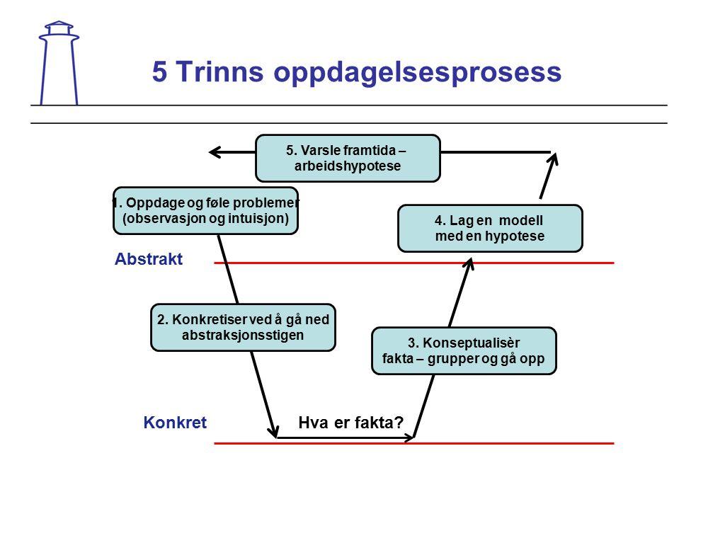 5 Trinns oppdagelsesprosess Abstrakt Konkret 1. Oppdage og føle problemer (observasjon og intuisjon) 2. Konkretiser ved å gå ned abstraksjonsstigen Hv