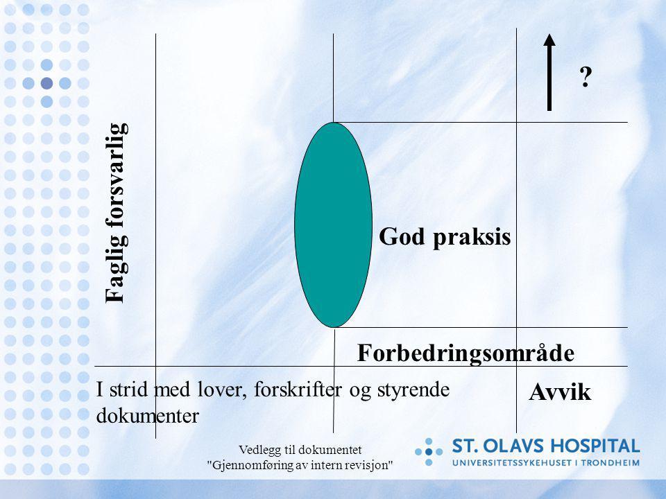 Vedlegg til dokumentet Gjennomføring av intern revisjon Faglig forsvarlig God praksis Avvik .