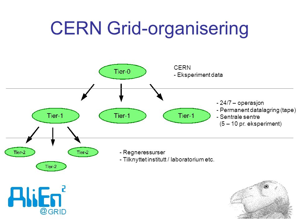 CERN Grid-organisering CERN - Eksperiment data - 24/7 – operasjon - Permanent datalagring (tape) - Sentrale sentre (5 – 10 pr. eksperiment) - Regneres