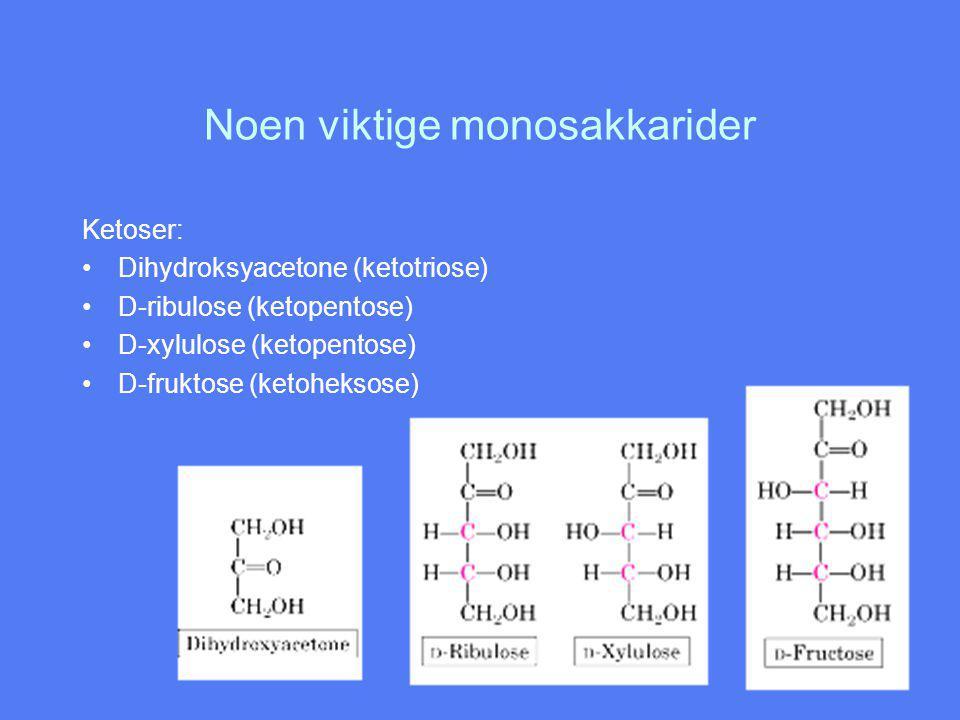 Noen viktige monosakkarider Ketoser: Dihydroksyacetone (ketotriose) D-ribulose (ketopentose) D-xylulose (ketopentose) D-fruktose (ketoheksose)
