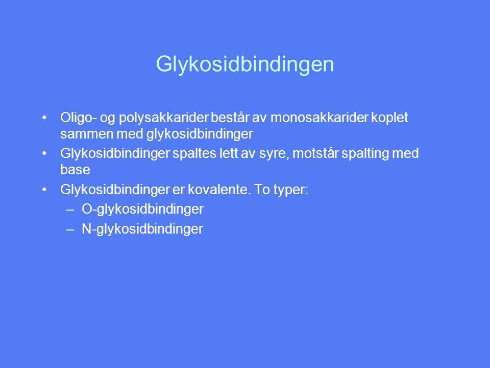 Glykosidbindingen Oligo- og polysakkarider består av monosakkarider koplet sammen med glykosidbindinger Glykosidbindinger spaltes lett av syre, motstår spalting med base Glykosidbindinger er kovalente.